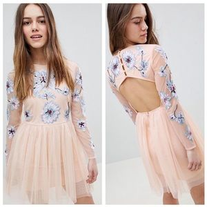 ASOS Petite Pastel Embroidered Tulle Mini Dress